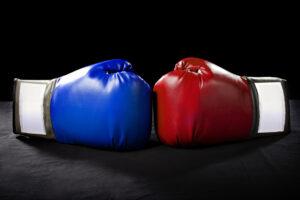 best cheap boxing gloves